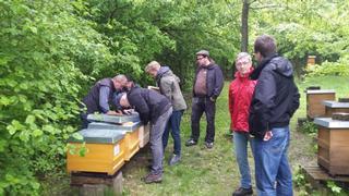 Besuch im Bienenlehrpark Aukamm