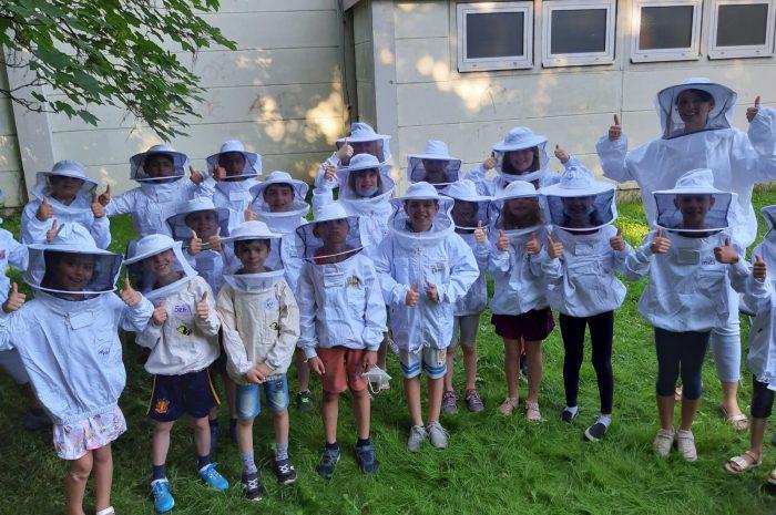 Naspa und Ortsbeirat retten Bienenprojekt